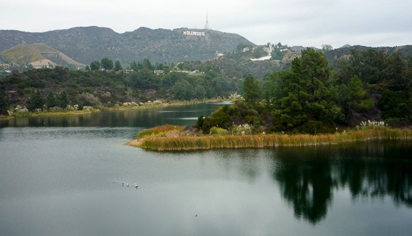 LakeHollywood 10